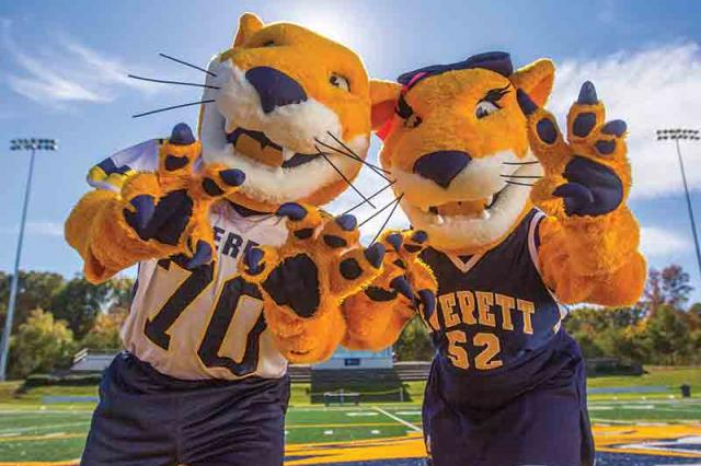 Averett Tiger Mascots